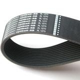 ripped belt