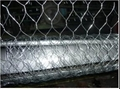 Hot-dipped Galvanized Hexagonal Wire Mesh