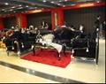 European classical fabric sofa 815#