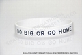 Printed silicone wristband WBP0002 2