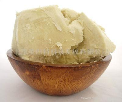 非洲原產乳木果油 3