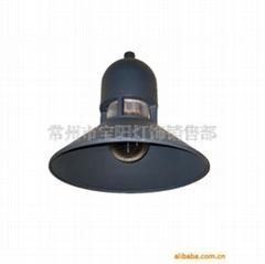 供應庭院燈TYDT-1482