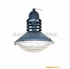 供應庭院燈TYDT-1461