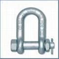 進口合金鋼D型卸扣-帶螺母銷 1