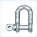 進口合金鋼D型卸扣-帶螺栓