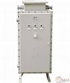 BQJ51系列防爆自耦減壓電磁