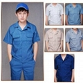 成都文化衫 2