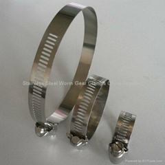 Stainless Steel Worm Gear Clamps China