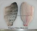 Skin-on tilapia fillets