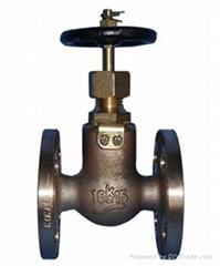 Marine Bronze Globe Valves