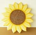 sunflower rotate 2