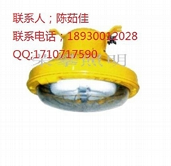 BFC8182防爆無極熒光燈BFC8183  NFC9175
