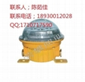 BFC8182防爆无极荧光灯BFC8183  NFC9175 2