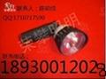 BFC8182防爆无极荧光灯BFC8183  NFC9175 5