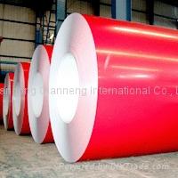 prepainted steel coils