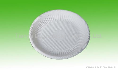 disposable plate biodegradable cutlery tableware DD08 1