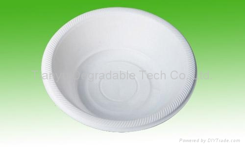 disposable plate biodegradable cutlery tableware DD09 1