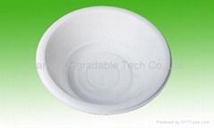 disposable plate biodegradable cutlery tableware DD09