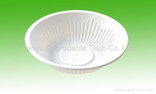 disposable plate biodegradable cutlery tableware DD10 1
