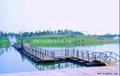 景观浮桥 4