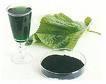 sodium copper chlorophyllin 1