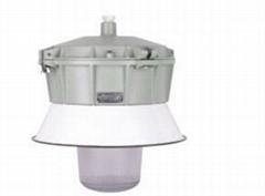 SFD60-系列防水防尘防腐灯