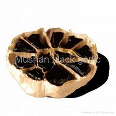 Henan Mushan Black Garlic Biology Engineering Co.,Ltd