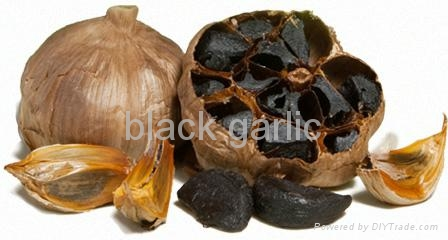 black garlic help fighting cancer 2