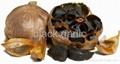 black garlic help fighting cancer 2