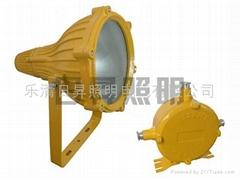 R-BTC8210防爆投光燈