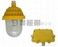防爆平台灯R-BPC8720