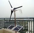 600W Wind Turbine Generator DC/AC 12V
