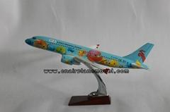 Resin airplane model pla