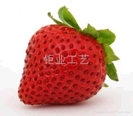 仿真水果蔬菜 2
