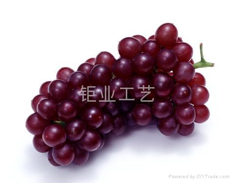 仿真水果蔬菜 3