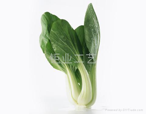 仿真水果蔬菜 4