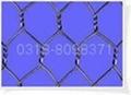 铅丝石笼 5