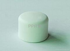 供應PPR管件-管帽