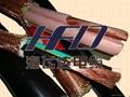 變頻器電力電纜BP-VVP/B
