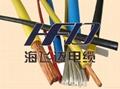 氟塑料絕緣耐高溫電力電纜