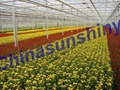 北京LED植物補光燈