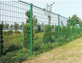 供应园林防护网圈地网