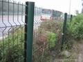 供应绿化护栏网