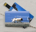 Credit Card USB2.0 Flash Drives gifts