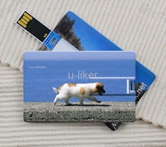 Credit Card USB2.0 Flash Drives gifts