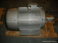 Y series three-phase asynchronous induction motors 3