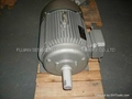Y series three-phase asynchronous induction motors 4