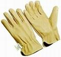 Unlined Pigskin Driver Glove 1