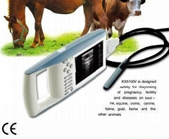 KX5100 vet palm ultrasound scanner (veterinary, human )