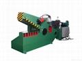 廠家供應Q43Y液壓剪切機 1